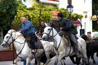 Camargue: After the Bullfight 2