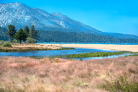 Taylor Creek Wetlands, Lake Tahoe #4977