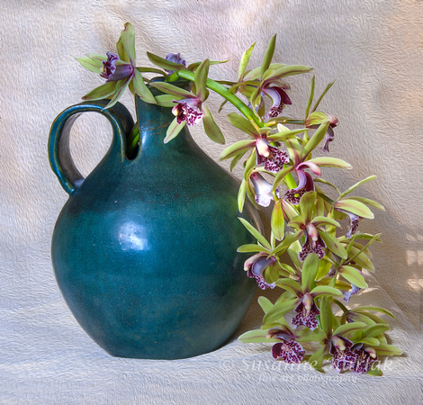 Green Pot and Orchids Too #019.3
