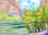 Painterly Zion Trees #1896.5